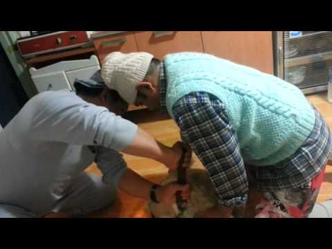 Mr Padam Rai  & Mr shiva Basnet  cooking dhido