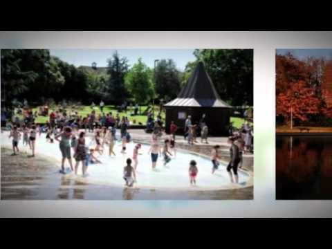 Basingstoke - Logan Carhire