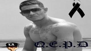 "Homenaje Para Luidig Ochoa ""Care Muerto"" QEPD Convive 2014"