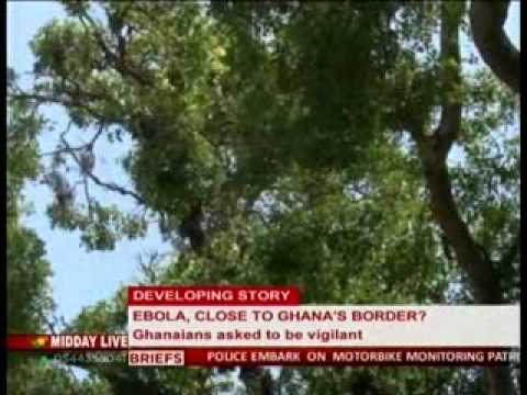 Midday Live - Ebola virus -Ghanaians adviced  to avoid Bat, Antelope and Monkey meat - 2/4/2014