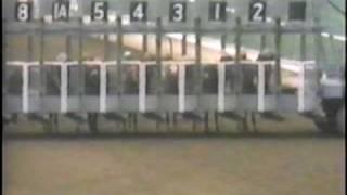 Sham - 1973 Santa Anita Derby view on youtube.com tube online.