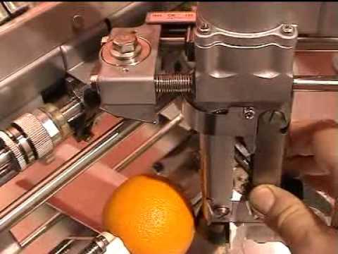 Pelador de naranjas industrial