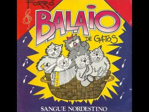 FORRÓ DOS ANOS 90 - BALAIO DE GATOS, PIRADA