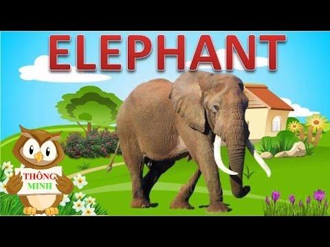 Dạy bé học các con vật bằng Tiếng Anh | hình ảnh và tiếng kêu các loài vật | Dạy trẻ thông minh sớm