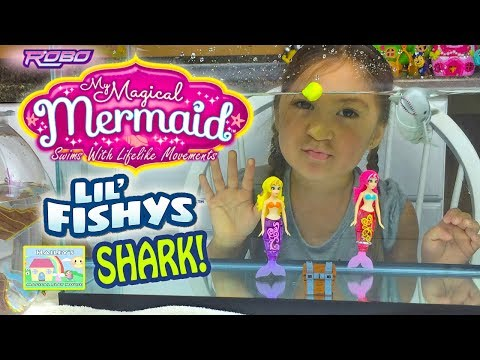 AMAZING MAGICAL MERMAIDS vs SHARK in AQUARIUM My Magical Mermaid & Lil' Fishy Shark Toy Opening Toys