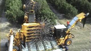 Oxbo 3220 Citrus Harvester