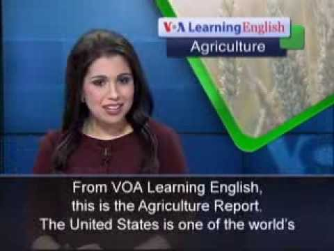Anh ngữ đặc biệt: New Farmers Go to Work (VOA-Ag Rep)