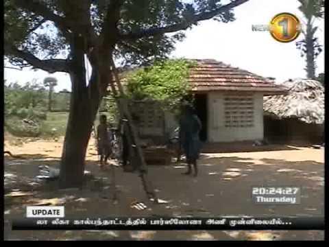 Hình ảnh trong video 8 00pm prime time news shakthi 31st october