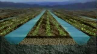 Tiahuanaco. Origen de un sistema de agricultura