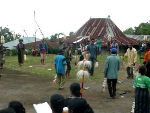 Naru ceremony with singing and dancing - Bajawa, Flores, Indonesia