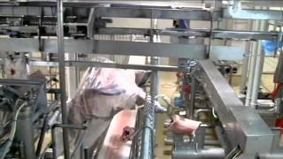 Scott Automated Lamb Boning System 2011