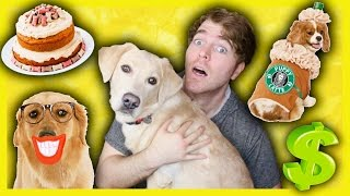 TRYING WEIRD DOG PRODUCTS