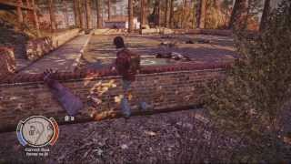 State Of Decay Breakdown Insane Difficulty Demo Mickey