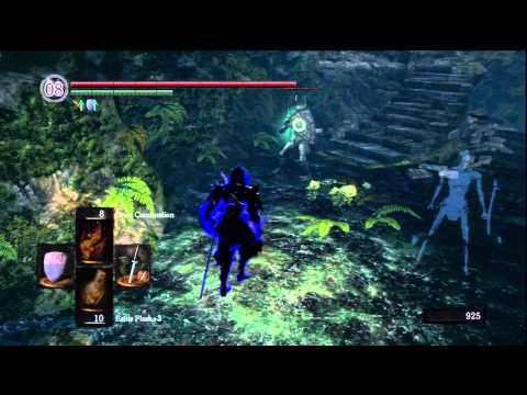 Dark Souls PvP: (From the Inside)