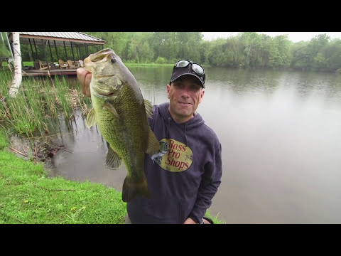 Shore Fishing Livetarget Tilapia Wakebaits for Largemouth - Dave Mercer's Facts of Fishing THE SHOW