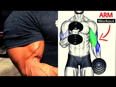 5 BEST BICEPS WORKOUT / musculation  biceps
