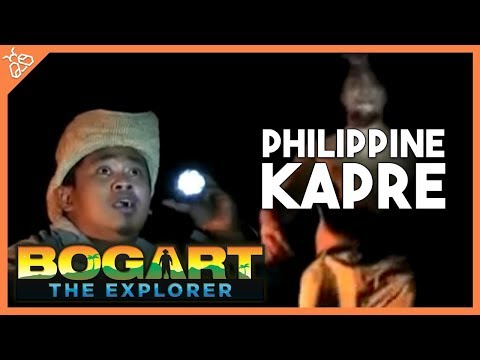 Bogart the Explorer presents The Philippine Kapre