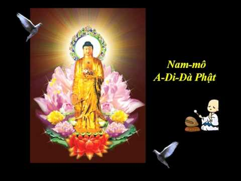 48 Loi Nguyen Cua Phat A Di Da   thich Tri Thoat