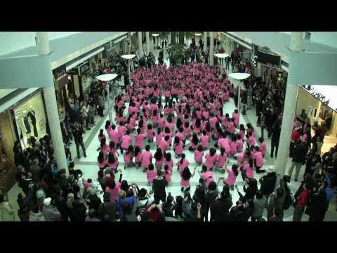 Anti-Bullying Flashmob January 2011