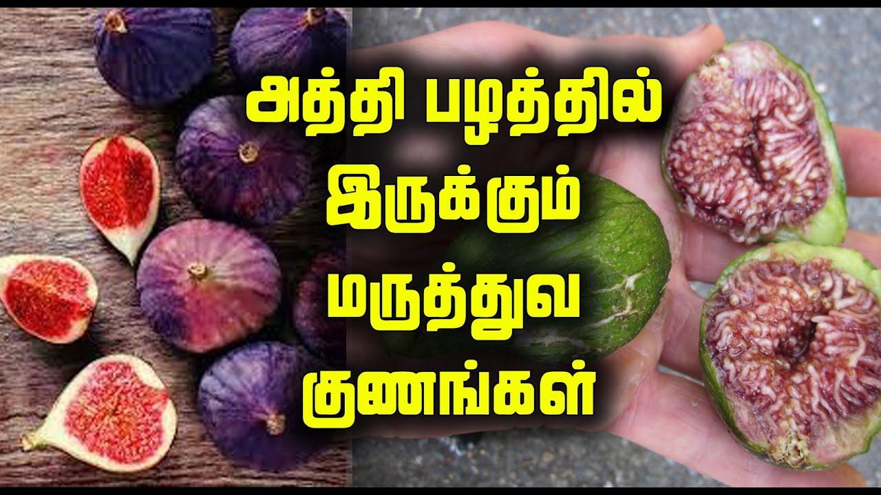 அத்தி பழத்தில் இருக்கும் மருத்துவ குணங்கள் | Medicinal Benefits of Fig Fruit