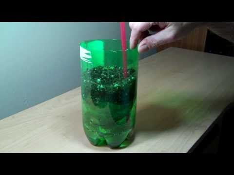 2 liter bottle self watering experiment DIY -MjUV1O7X4ns