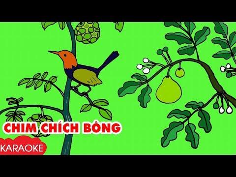 CHIM CHÍCH BÔNG - Karaoke | Nhạc Karaoke Thiếu Nhi Beat Chuẩn Dành Cho Bé