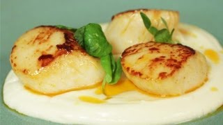 Seared Scallops With Chorizo Butter, Cauliflower Puree And Pea Shoots: Simply Gourmet
