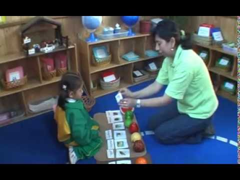 METODO MONTESSORI EN KREATIVIDAD - YouTube