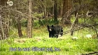 Tomtesterom S01E08 Goud Vinden
