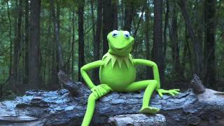 Kermit the Frog ALS Ice Bucket Challenge: It's not Easy Being Cold