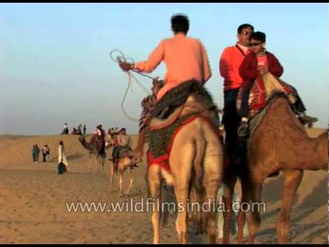 Camel ride in the Thar desert near Jaisalmer, Rajasthan