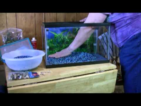 How to set up a dual 10 gallon betta fishtank youtube for Betta fish tank accessories
