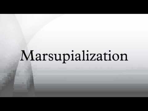 Marsupialization