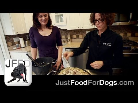 0 How to Make Homemade Dog Food | Just Food For Dogs