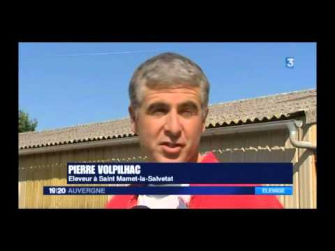 Reportage FCO