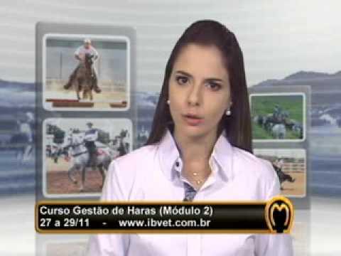 MMTV no. 214 - exibido 10/11/2013