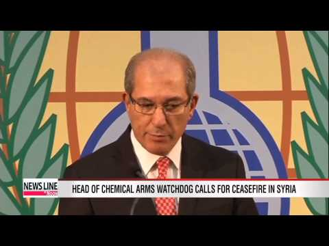 Head of chemical arms watchdog calls for ceasefire in Syria