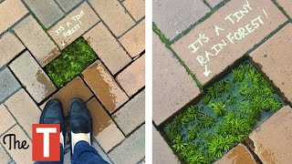 Random Acts Of Vandalism That Are PURE GENIUS