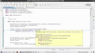 Hibernate Tutorial 30 - Understanding Restrictions