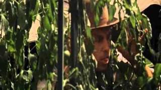 Muerte De Don Corleone (el Padrino)
