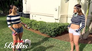 "Brie wants to build a dog run for Josie in the ""Museum of Cena"": Total Bellas, Oct. 5, 2016"