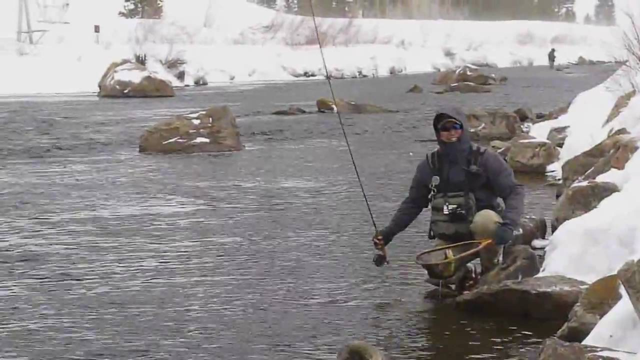 Taylor river fly fishing colorado april2010 youtube for Taylor fly fishing