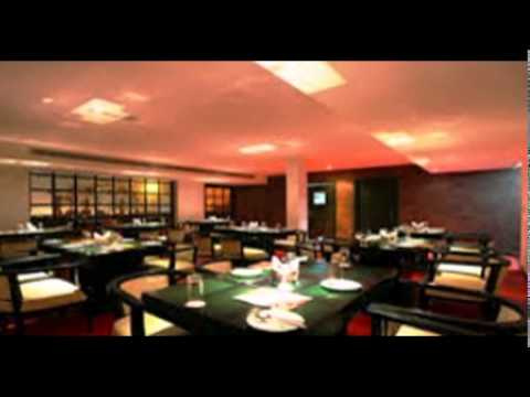 Call +91-9999992486 - Budget Hotel near Airport Delhi Saves Money in Ample