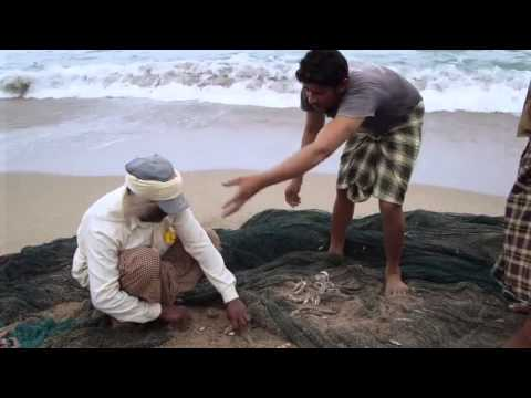 Fujairah Tours Video