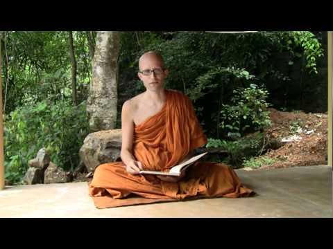 Dhammapada Verse Two: Happiness Follows a Pure Mind
