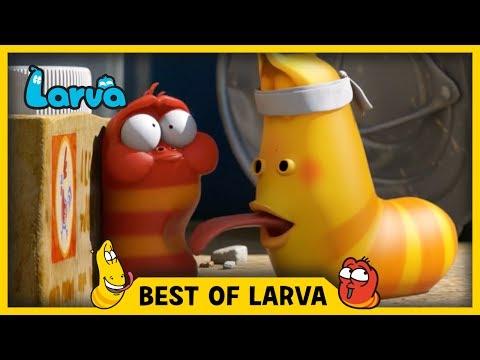 Larva - To najlepšie z Larvy