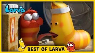 Larva - To nejlepší z Larvy