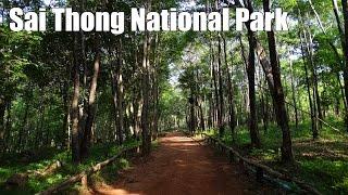 Sai Thong National Park, Chaiyaphum, Northeastern Thailand