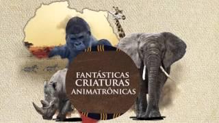 Exposi��o �frica - Animais Selvagens - �ltimos Dias!!