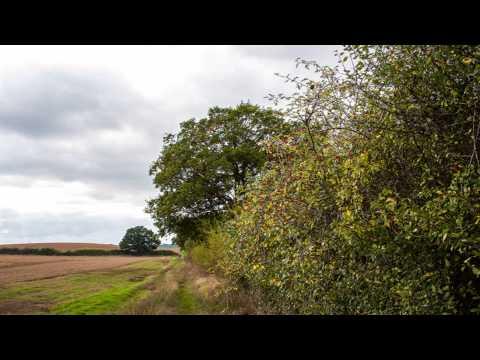 Lurgashall winery Great Missenden Buckinghamshire